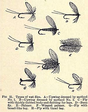 Fig 51-Types of Wet Flies from The Trout Fly D...