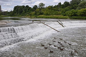 Weir on Humber River, Toronto, midway between ...