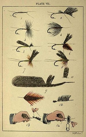 Plate VII From Rod Fishing, Henry Wade (London...