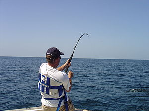 Deep sea fishing from a boat in the Gulf of Mexico