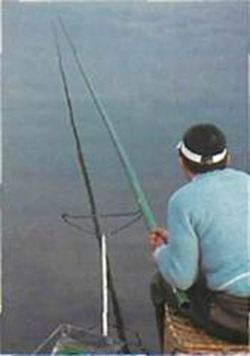 fishing with a pole