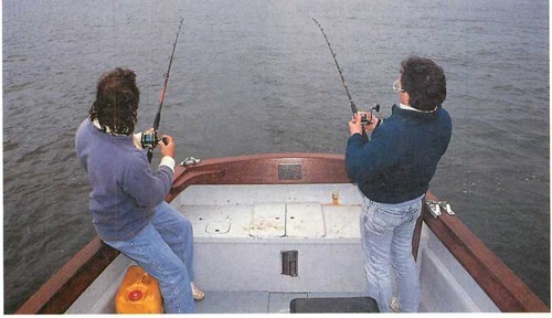 A pair of anglers troll for bass