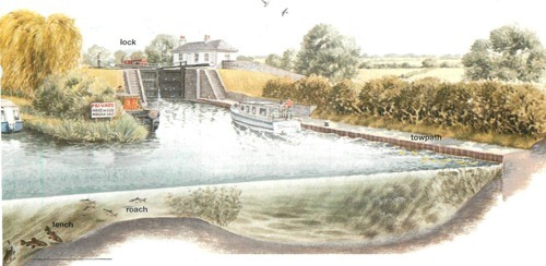 Canal wides, bays and basins2