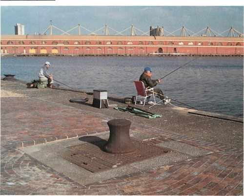 Fishing in freshwater docks