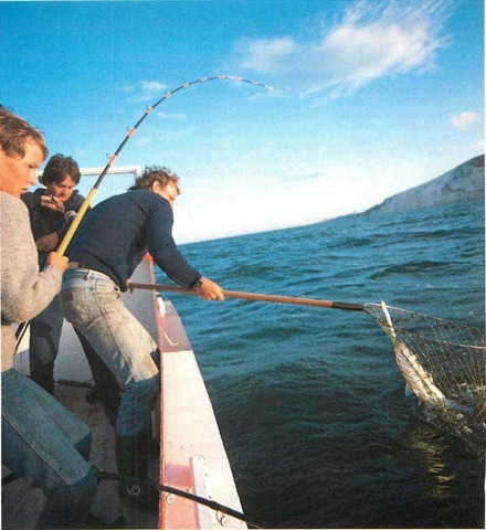 Leads and booms for sea angling