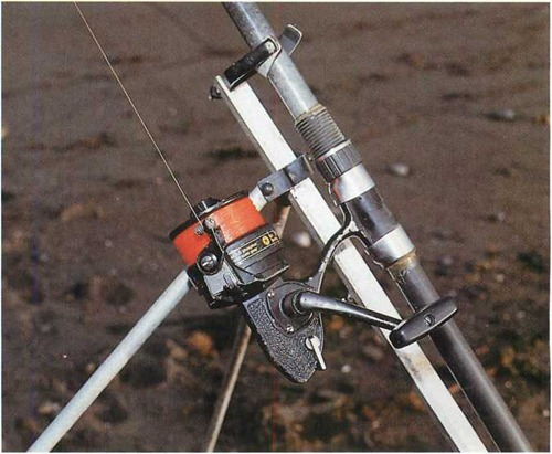 fixed-spool reels designed for shore fishing