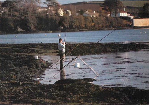 using three rods to fish an estuary