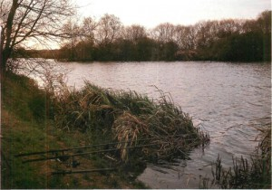 15 Rocla Lake at Linear Fisheries, Linford, Buckinghamshire