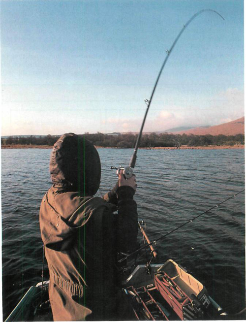 33 Loch Lomond fishing
