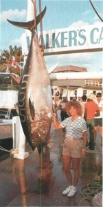 Bluefin tuna (or tunny) – a visiting game fish