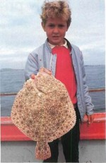 The highly prized turbot