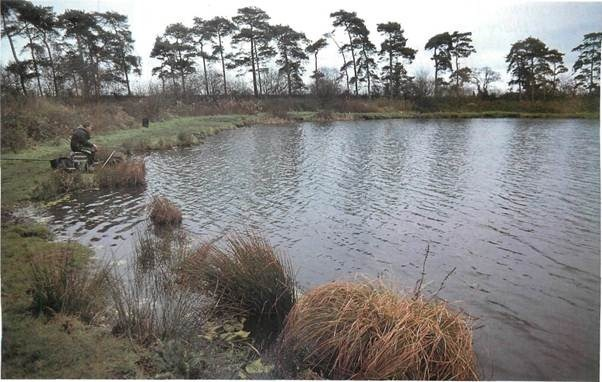 fishing at Gorsty Hall