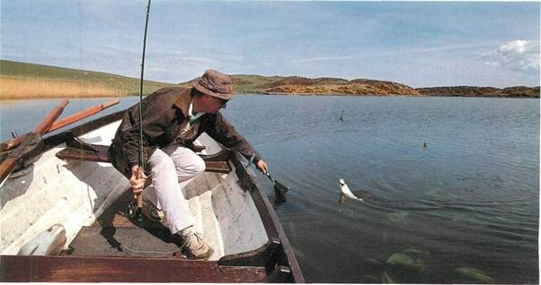 Fly Fishing on Coldingham Loch
