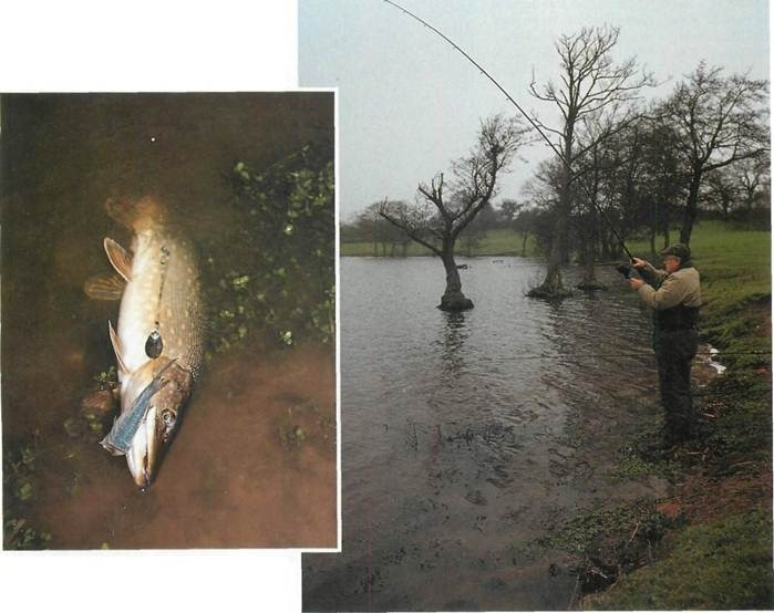 fishing for pike at Oss Mere