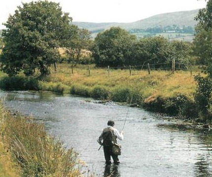 trout fishing on the upper Teifi