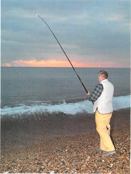chesil beach fishing at night